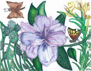 An Azalea Attracts Butterflies