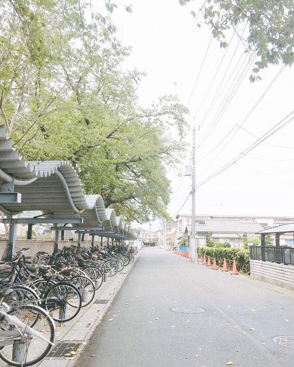 Autumn in Campus - Jul in Japan