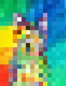 Color Cat