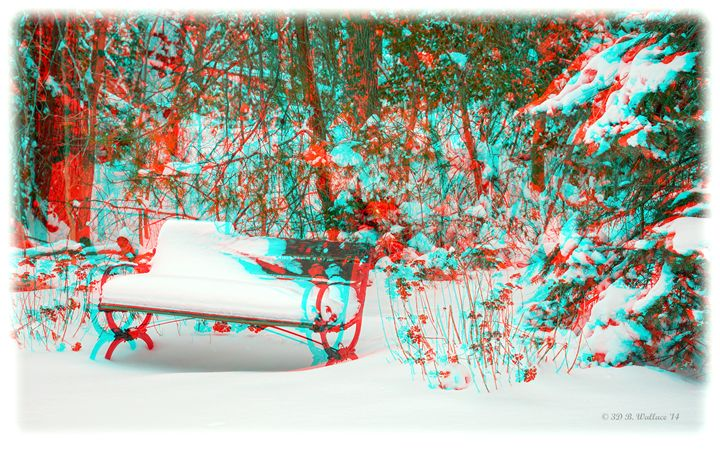 Snowy Bench - 3D Glasses Required - Brian Wallace