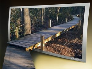 Walk Bridge