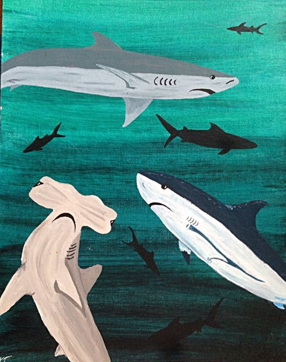 Shark Haven - Kristen Jaques Jones