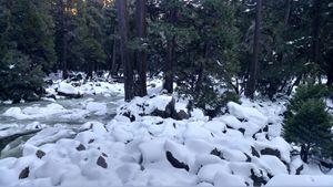 Yoemite National Park Frozen Creek