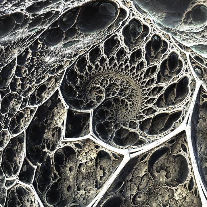 Roots - Evolving Symmetry