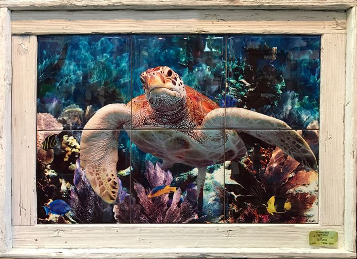 Turtle in the Seafans - Lobster Trap Art