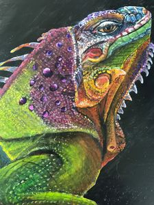 I wanna the Iguana