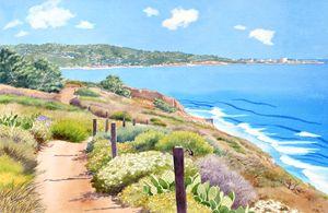 Torrey Pines and La Jolla
