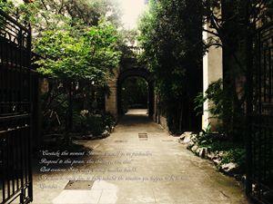 Garden of stillness