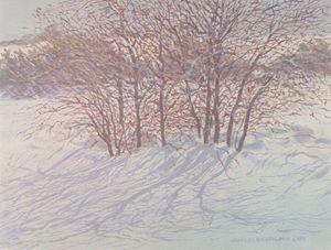 Snow - Trees | Texas Art Prints