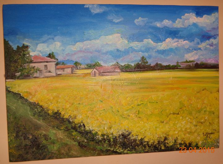 Yellow Field - Sofija