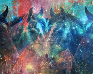 Animal Rorschach: Equine