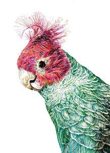A Parrot - Boris Kuzenko