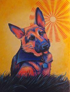 """""""Shepherd in the Sun"""" Randa Hitchner"""