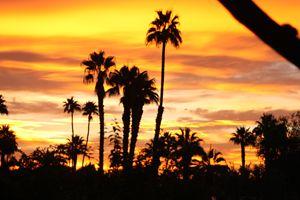Good Morning Palm Springs