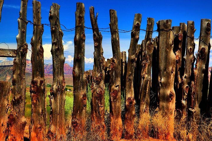 Forever Fence - Robert Fein Photography