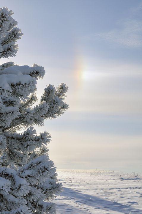 Winter rainbow halo - Sergejus Lamanosovas - Severas