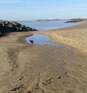 Sand pool, rocks.