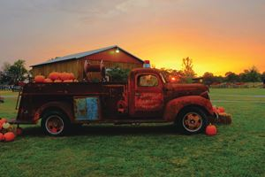 Pumpkin Fire Truck