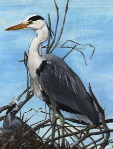 Proud Father Heron - Down To Earth Artwork