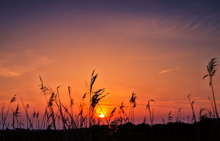 Marsh Sunset - Jez