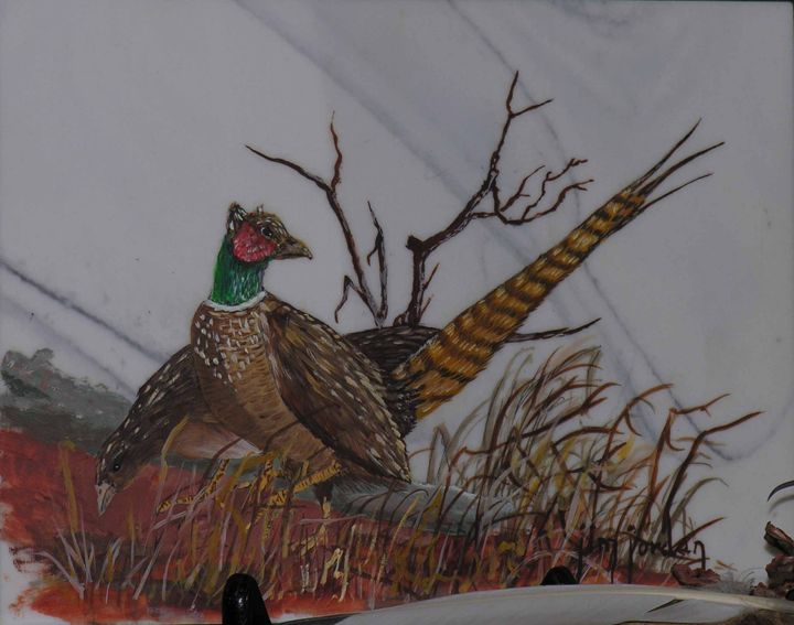 Pheasant Pair - Jim Jordan Fine Art