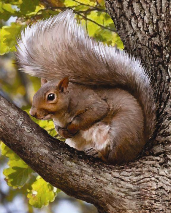 Squirrel in a Tree - Aviva Gittle Gifts
