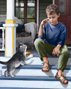 Kitten Comforts Boy