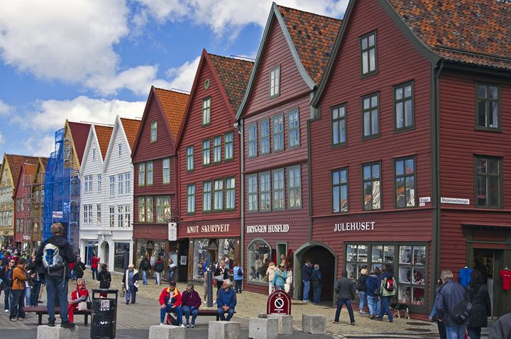Busy Bergen - Pluffys portfolio