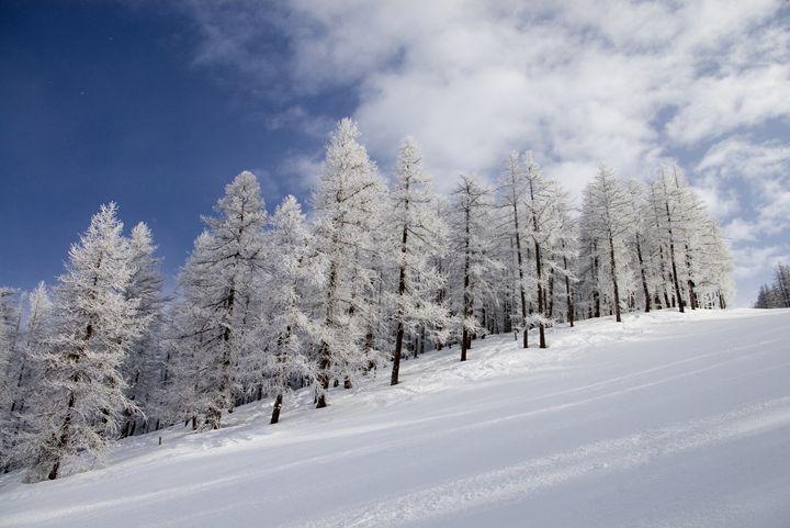 Under a winter sky - Pluffys portfolio
