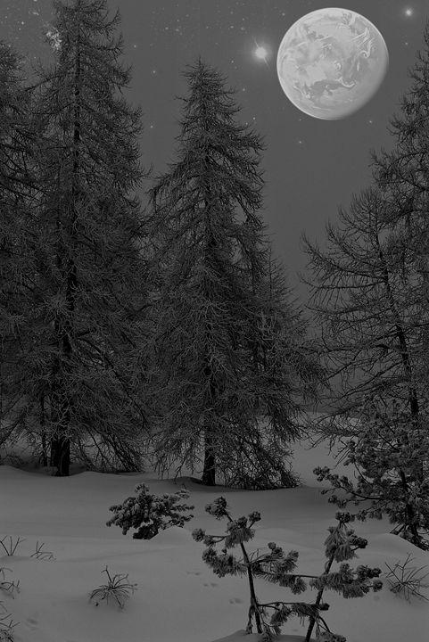 The Winter sky - Pluffys portfolio