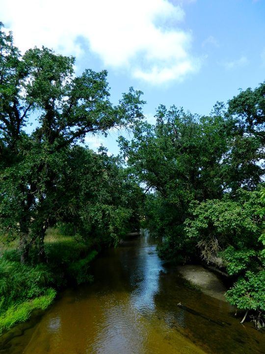 Wet Creek - Markell Smith Gallery