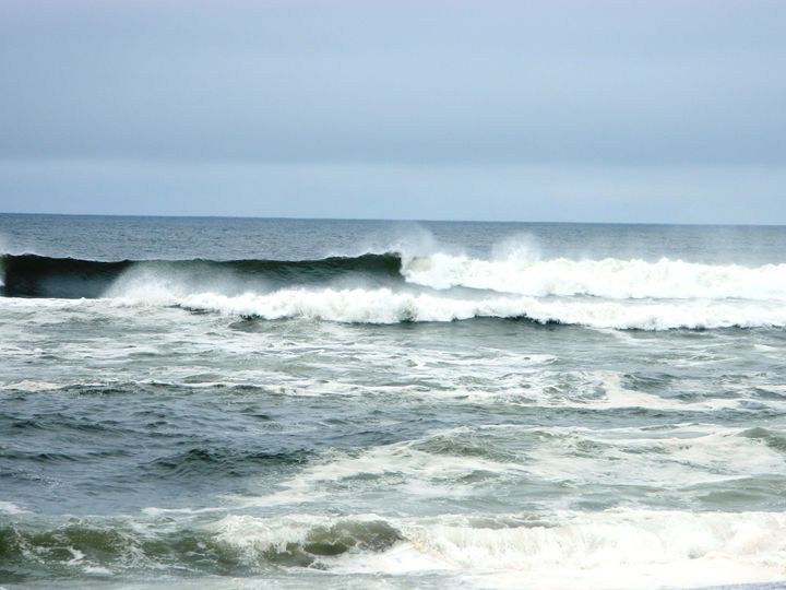Coastal Wave - Markell Smith Gallery