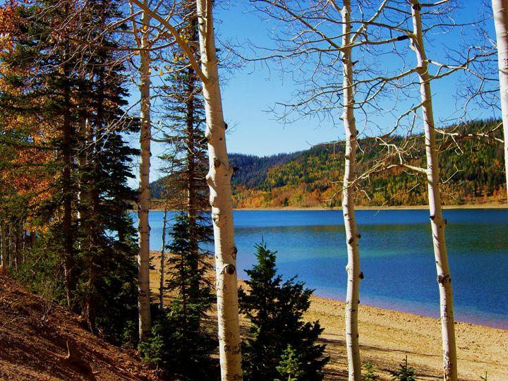 Navajo Lake - Markell Smith Gallery