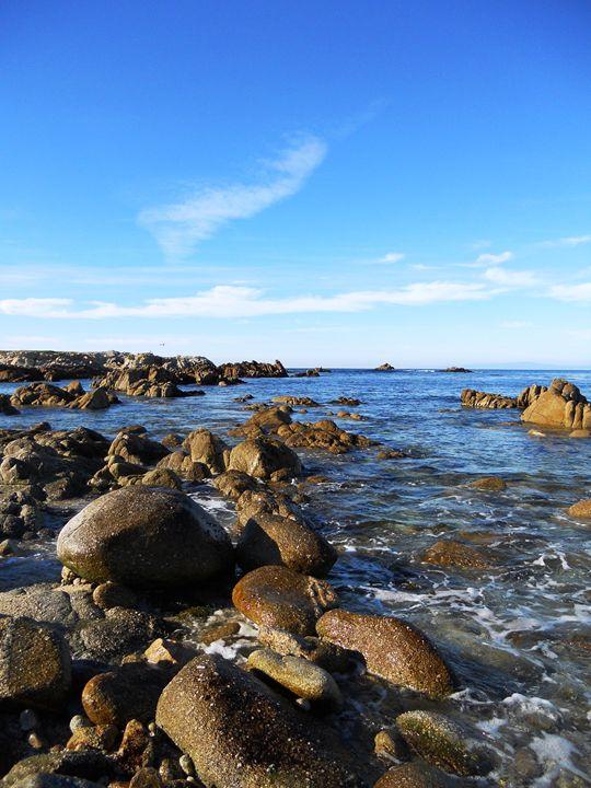 Monterey Coastline - Markell Smith Gallery