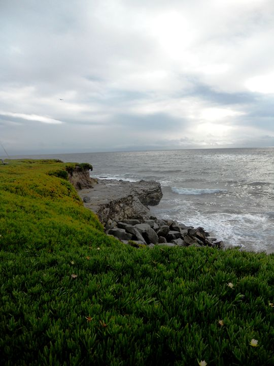 Coastal Bluffs - Markell Smith Gallery