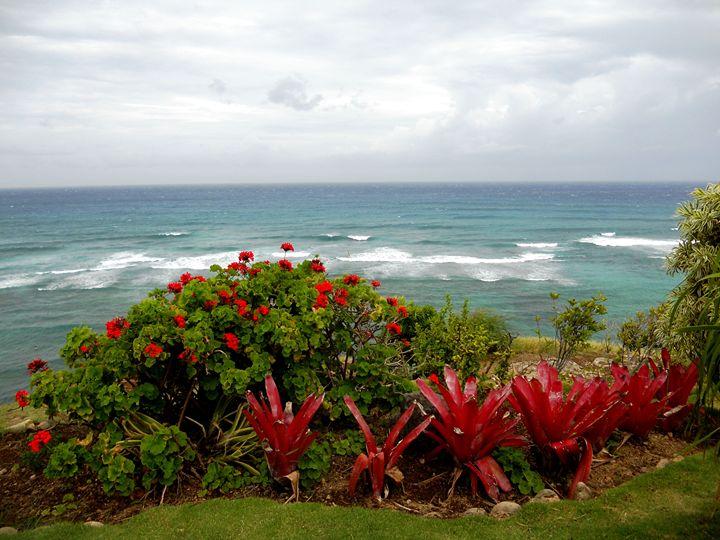 The Oahu Coast - Markell Smith Gallery