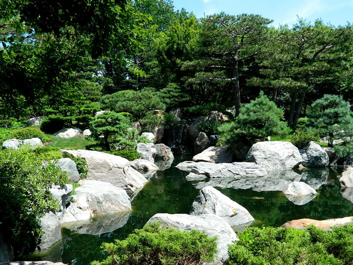 The Japanese Garden - Markell Smith Gallery