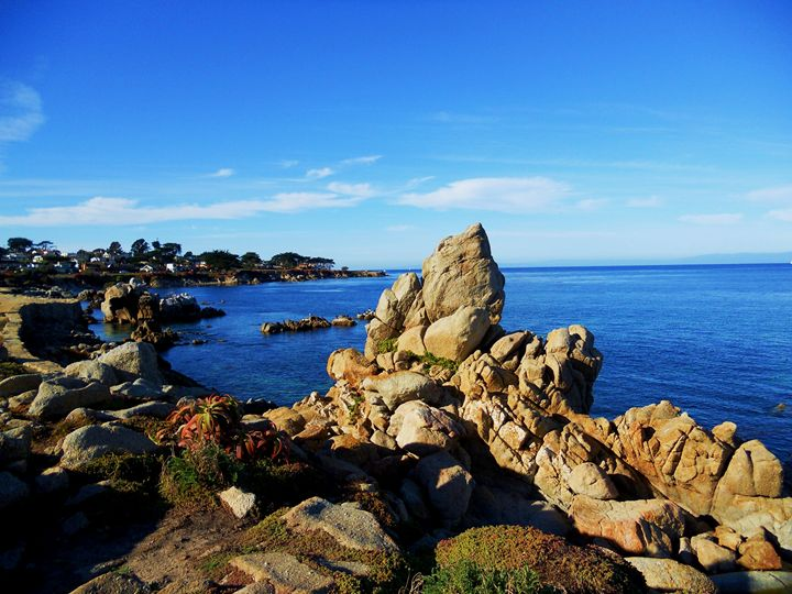 Monterey Rock - Markell Smith Gallery