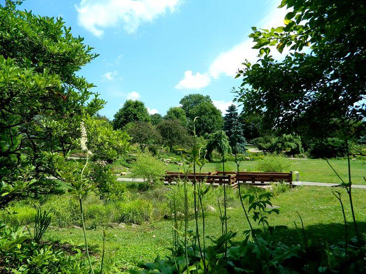 The Garden - Markell Smith Gallery