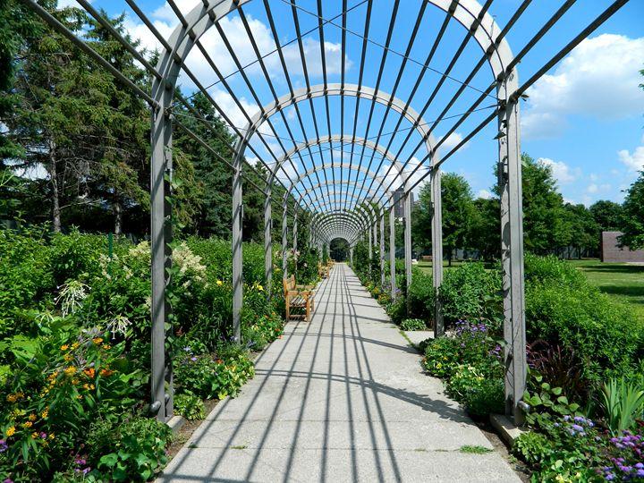 Garden Park - Markell Smith Gallery