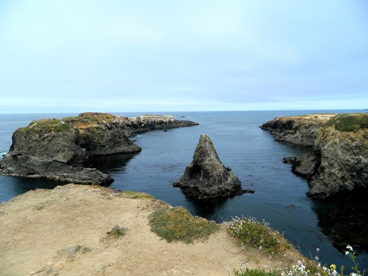 Mendocino Headlands - Markell Smith Gallery