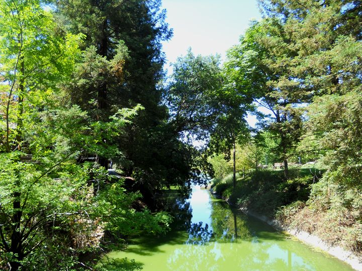 Davis Arboretum - Markell Smith Gallery