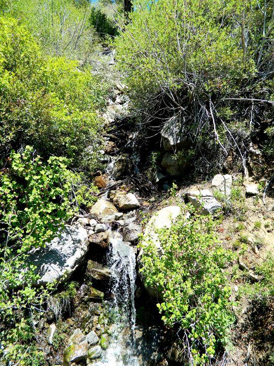 Tahoe Creek Falls - Markell Smith Gallery