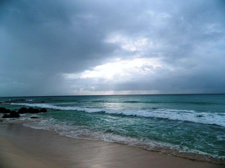 The Beach in Aruba - Markell Smith Gallery