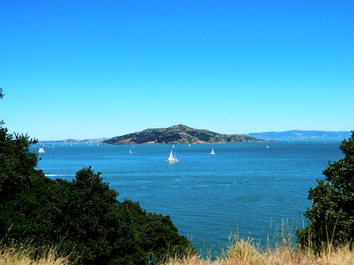 Angel Island - Markell Smith Gallery
