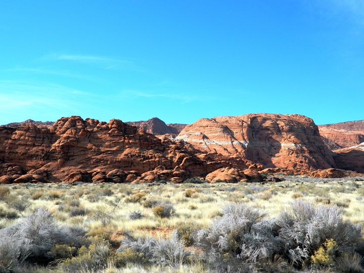 Snow Canyon - Markell Smith Gallery