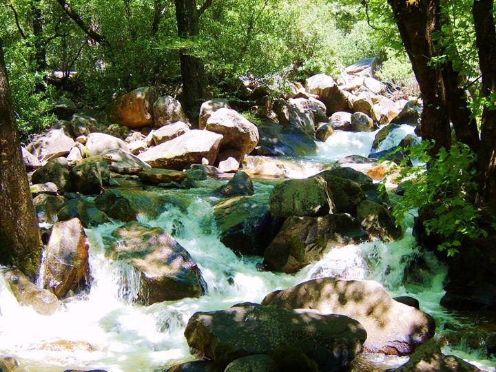 Yosemite Creek - Markell Smith Gallery