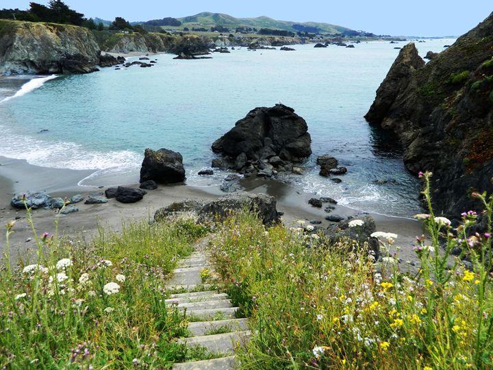 The Coastal Path - Markell Smith Gallery