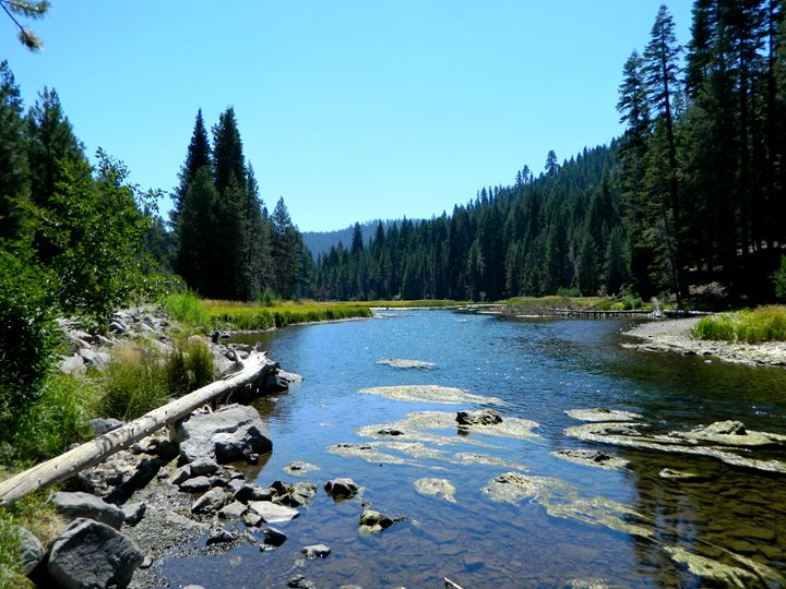 Truckee River - Markell Smith Gallery