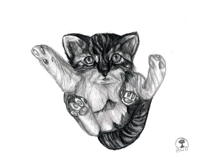 playful cat - Sajdartecreativo